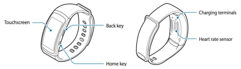 Samsung publica el manual de la pulsera Gear Fit 2