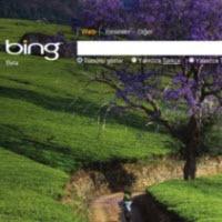 Microsoft'un Bing zaferi