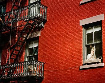 Photos of NY.