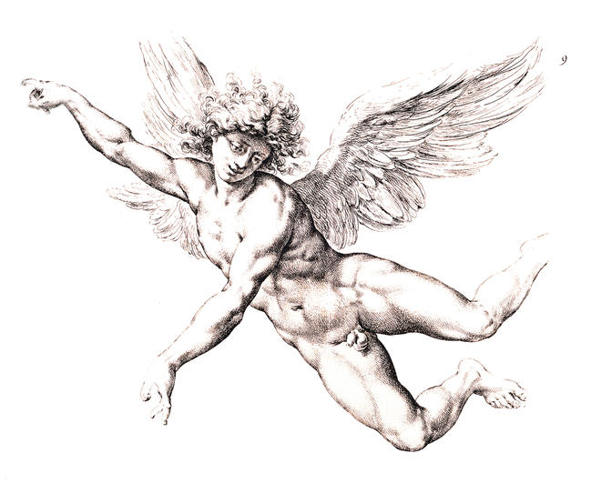 Cupid via tektura.com