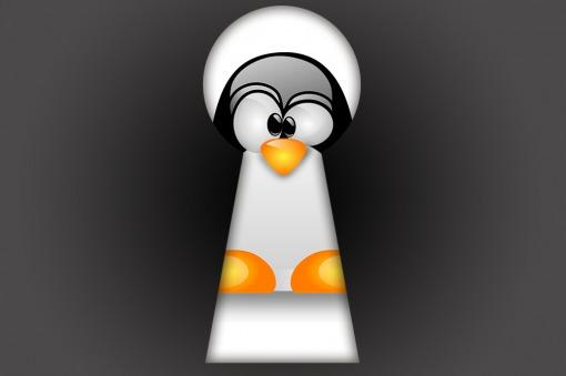 NSA intentó acceder al sistema operativo Linux
