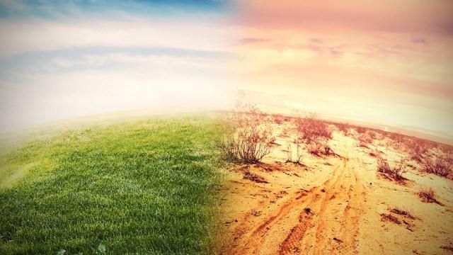 La degradación del mundo natural ya está socavando el bienestar de 3.200 millones de personas.