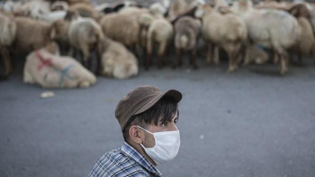 Irán es el país de Medio Oriente más afectado por la pandemia