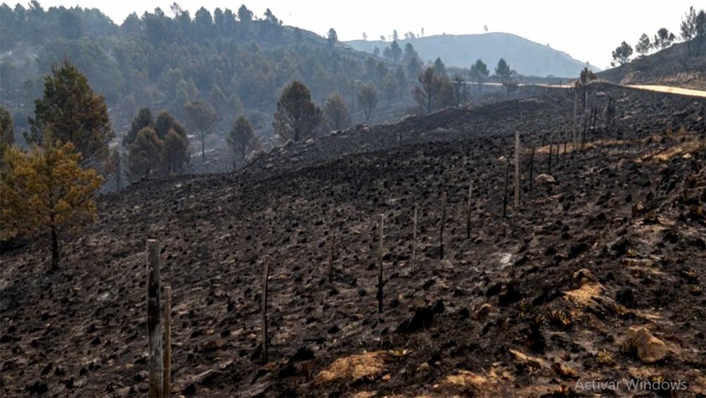 Seguirán trabajando con 70 bomberos para controlar que no se reinicien los fuegos.