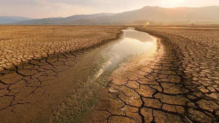 El cambio climático está volviendo frecuentes las temperaturas récord. A nivel mundial, la década hasta 2019 fue la más calurosa registrada, y los cinco años más calurosos coincidieron con el último lustro.