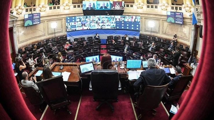 El Senado debate el proyecto de legalización del aborto.