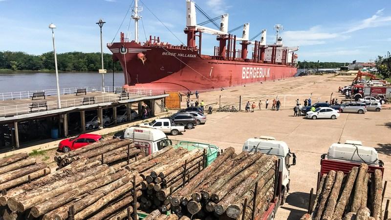 Entre 2018 y 2020 unos 33 buques exportaron madera desde los puertos de Concepción del Uruguay e Ibicuy,