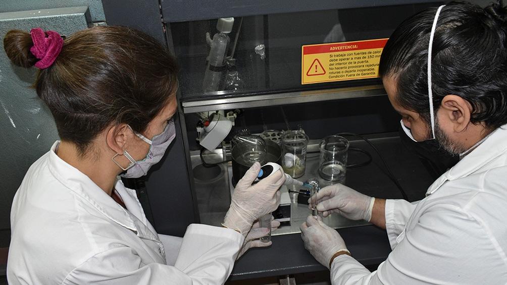 En la sede del INTA en Bariloche, junto a los laboratorios Bagó, desarrollan una vacuna que comenzaría a probarse en humanos a fin de año. (Foto: INTA).
