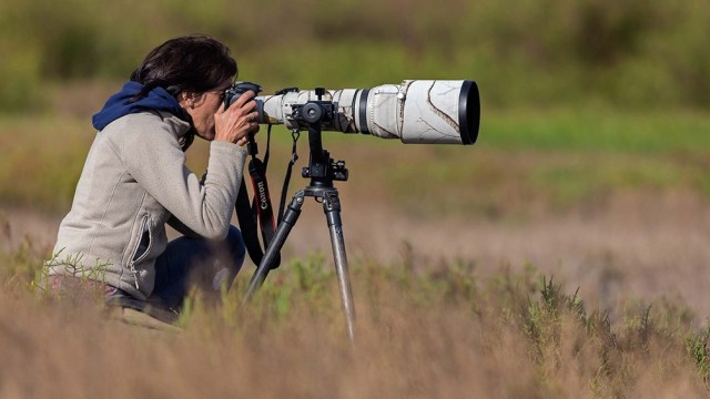 El avistaje de aves tiene miles de adeptos en Mar Chiquita.