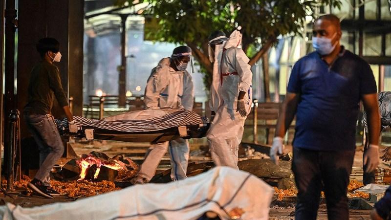 El Ministerio de Salud informó 386.452 casos en las últimas 24 horas
