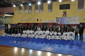 exhibiciontelde2015a Hapkido
