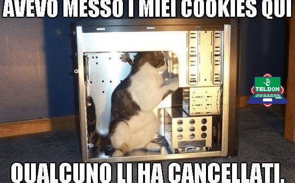 Avevo messo i miei cookies qui