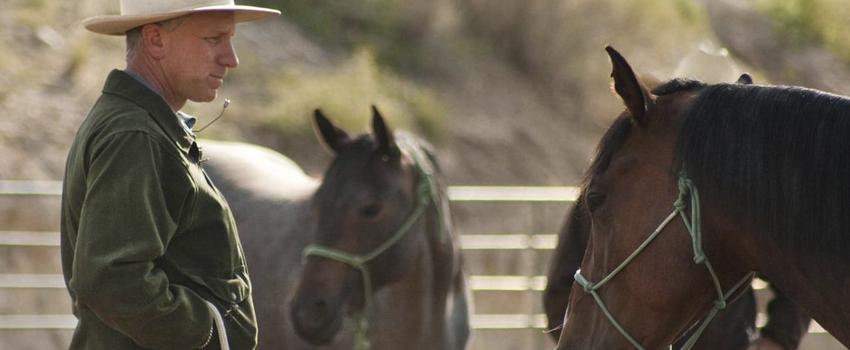 Film di cavalli: Buck documentario