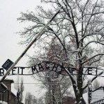 Auschwitz-Work_Set_Free