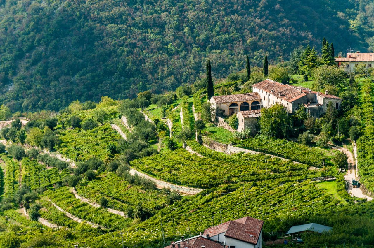 Verona The Italian Region With The Wine And Hilltop