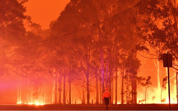 Australia has spent its summer gripped by wildfires