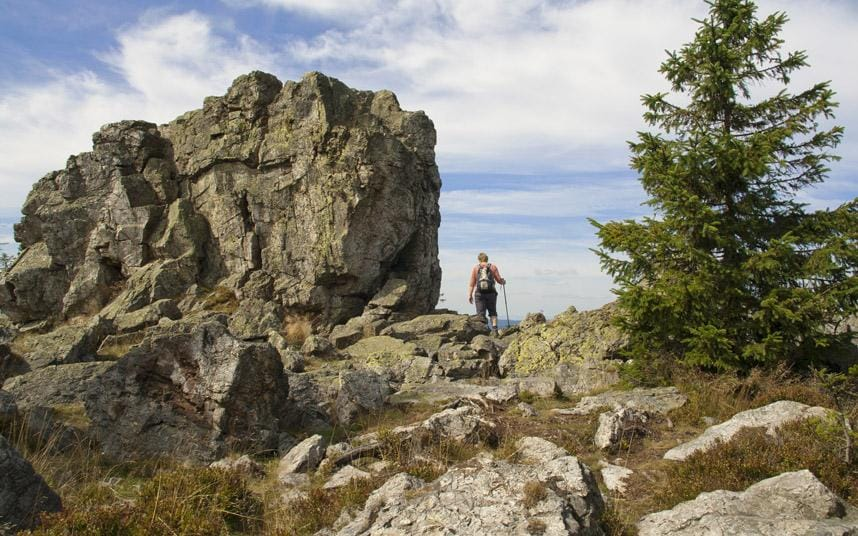 Germany fairytale highs in the Harz Mountains  Telegraph