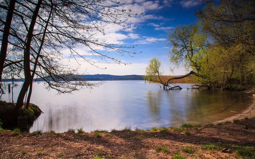 Fall Wooded Wallpaper Berlin S Best Lakes For Sunbathing And Wild Swimming