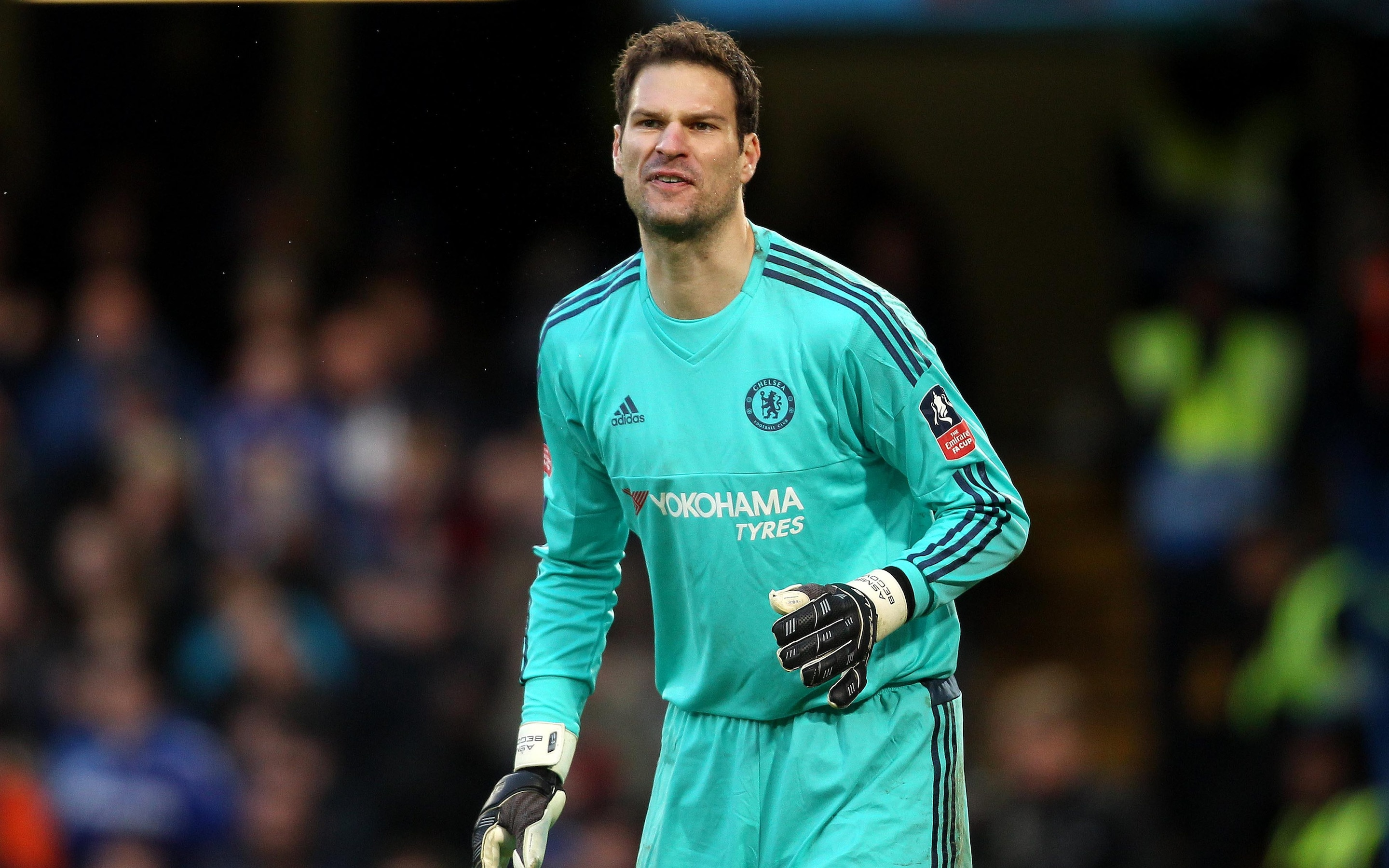 Asmir Begovic Forced To Put Bournemouth Move On Hold