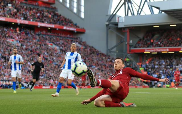 Image result for liverpool brighton