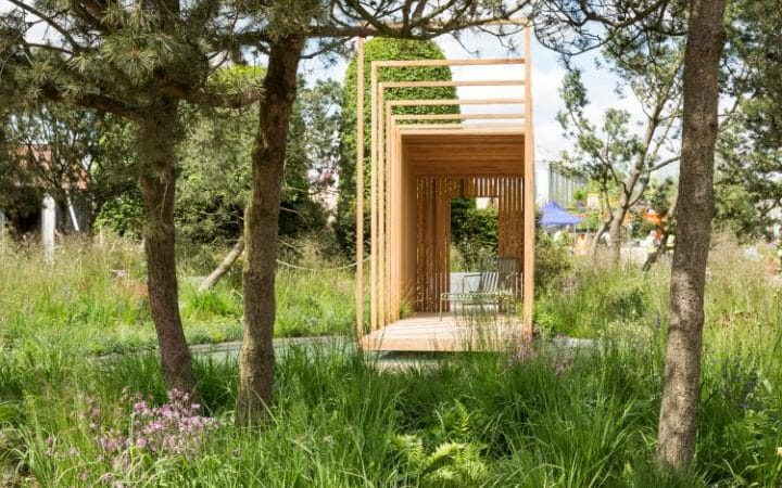 Cloudy Bay Garden at RHS Chelsea 2016