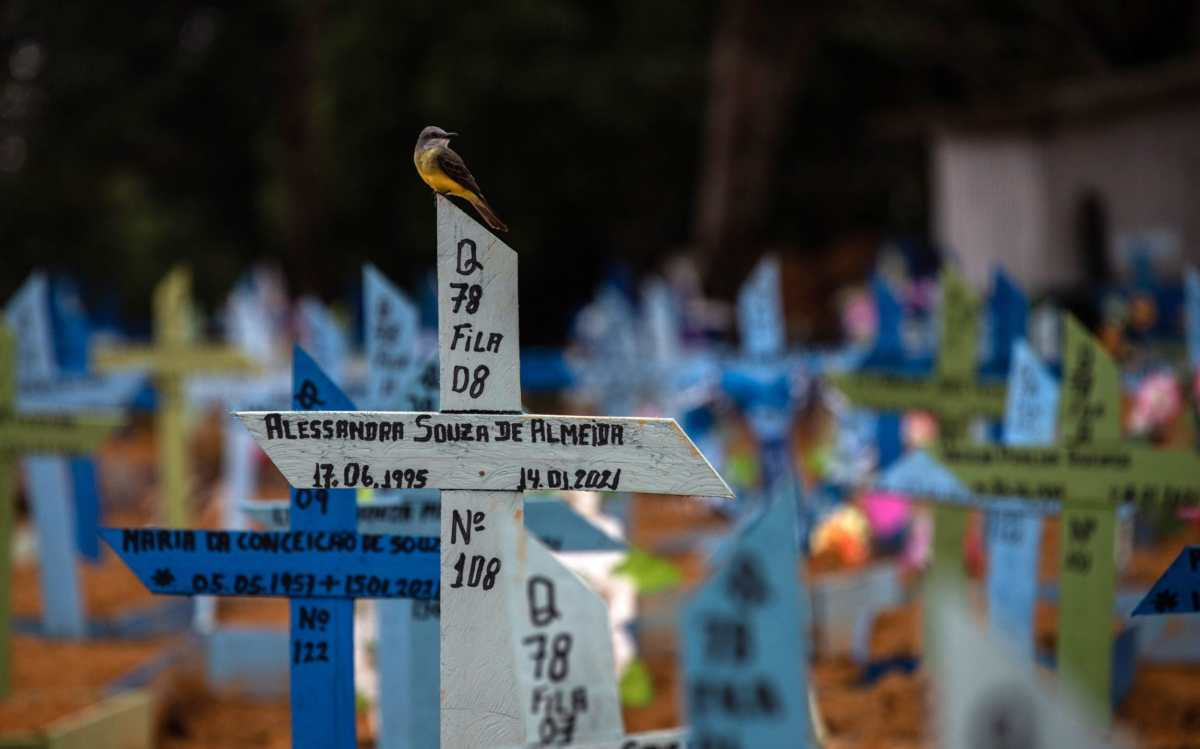 A bird perches on the cross that accompanies the grave of a person who died in January, in the Nossa Senhora Aparecida Cemetery, where victims of covid-19 are buried, in Manaus