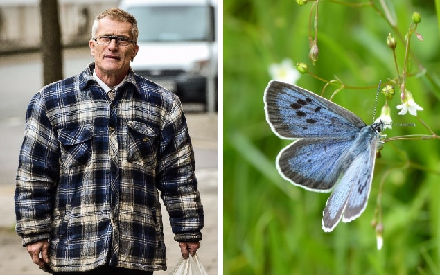 Phillip Cullen and a Large Blue Butterfly