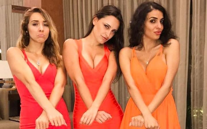 Playmates Lauryn Elaine, Marie Brethenoux and Elif Celik were reportedly detained by Mexican police officers on June 30 at a party for Playboy Music Fest in Merida, Mexico