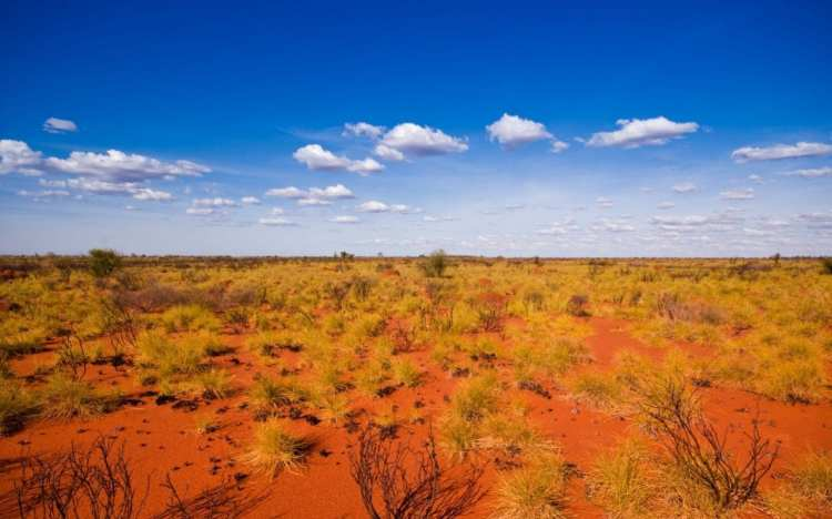 Body found in search for missing woman in Australian Outback