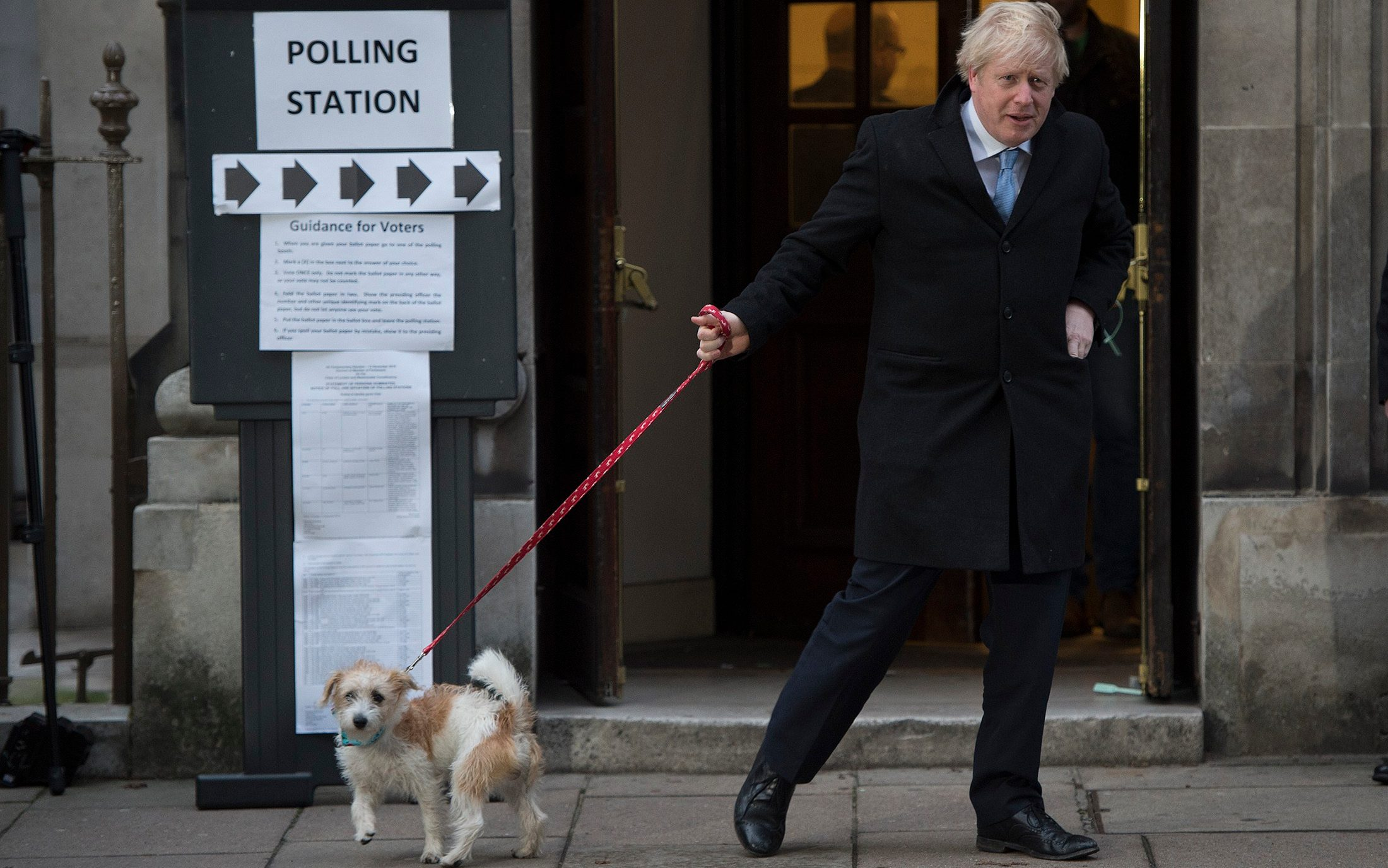 Dogs at Polling Stations during the 2019 General Election, in pictures