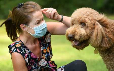 Animal Charity Says Dogs are 'Scared and Confused' by Owners' Face Masks