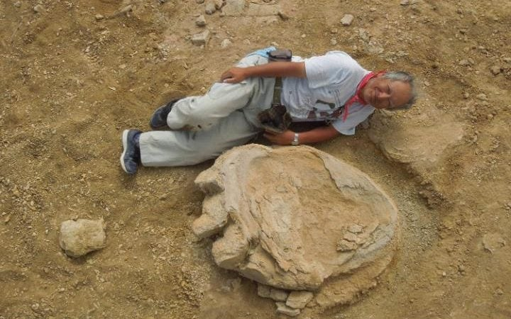 Image result for Dinosaur footprint among the largest on record discovered in Mongolia's Gobi Desert