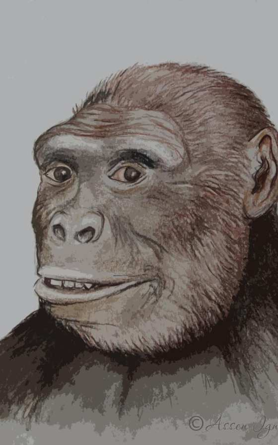 An artist's impression of Graecopithecus