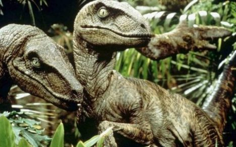 However humans could not have run away from a velociraptor