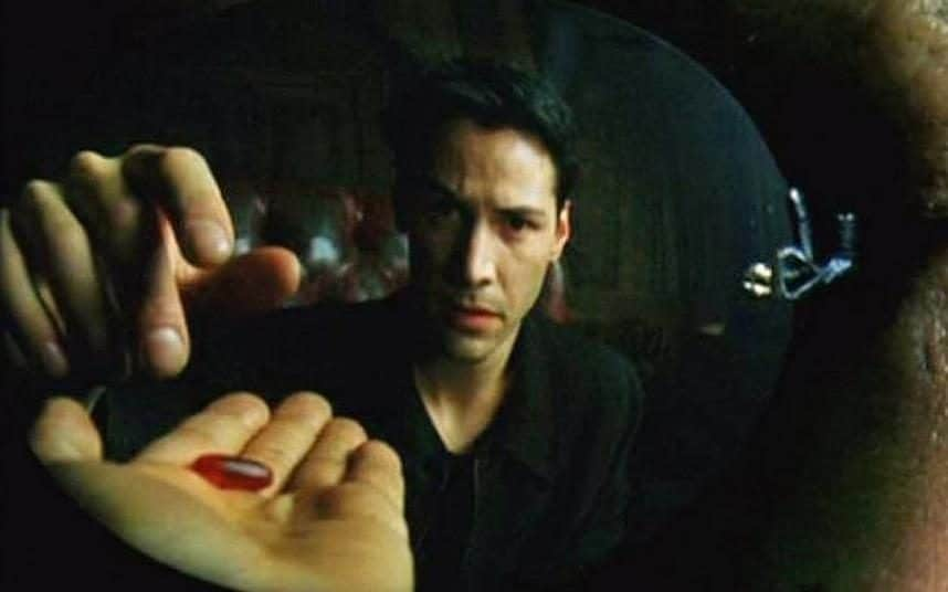 Image result for matrix red pill