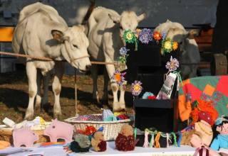 Fiera del bestiame al Paese Vecchio