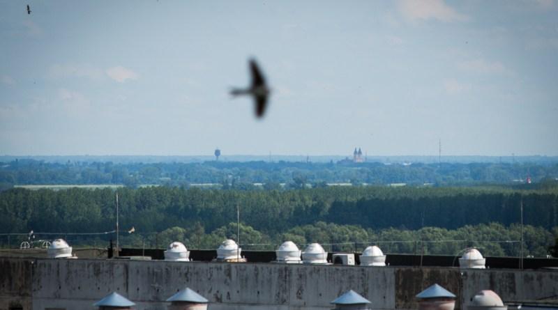 Bár a kalocsai székesegyház tornya Paksról szabad szemmel látható, Dunaföldvár vagy Szekszárd felé kerülve egy óra az út a két település között. Fotó: Kövi Gergő/Paksi Hírnök
