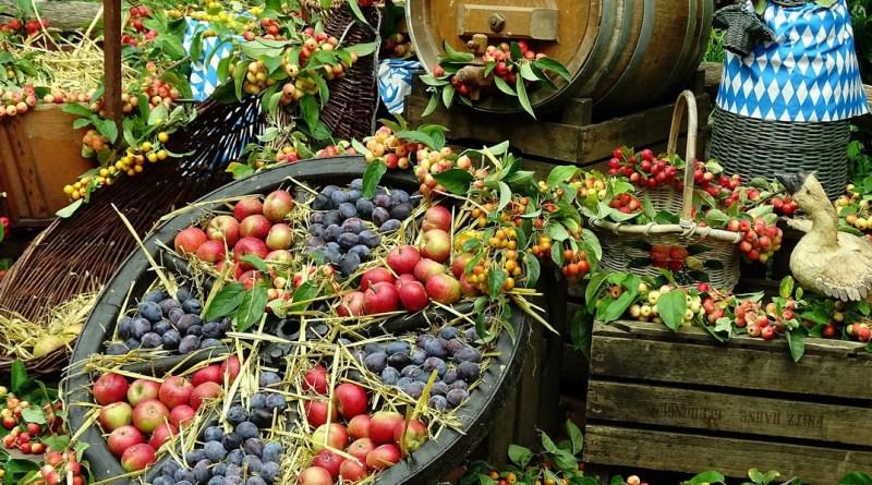 Az ősz gyümölcseiből kell készíteni szörpöt, süteményt, lekvárt a dunakömlődi szüreti naphoz kapcsolódó pályázatok keretében. Fotó: www.pixabay.com