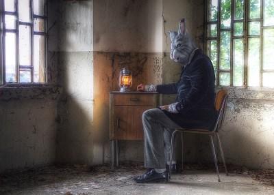 rabbit sitting at table
