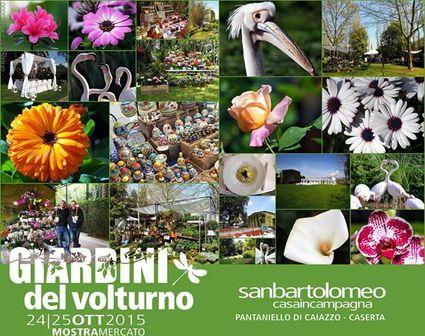 caiazzo-san+bartolomeo-15x12-giardini-volturno-11