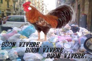 gallo+monnezza-buon+vivere-11_615x410