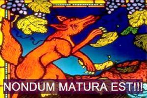 volpe-uva-nondum-matura-est-txt-1-615x410