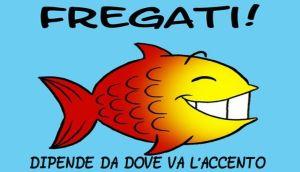 pesce-fregati1-txt-715x410.jpg