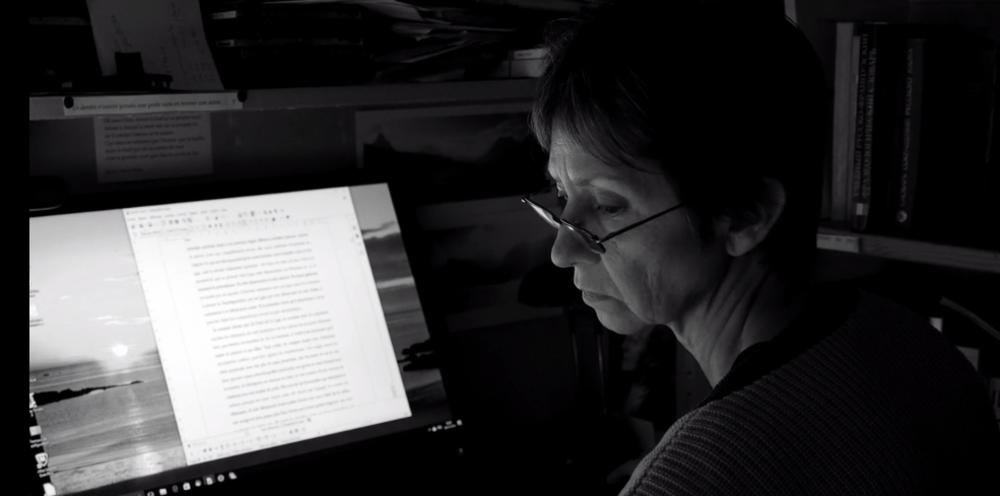 Des voix dans le chœur – Eloge des traducteurs, de Henry Colomer.