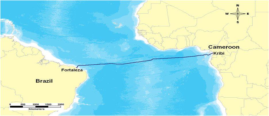 O CBCS ligará Brasil ao Camarões até o final de 2017