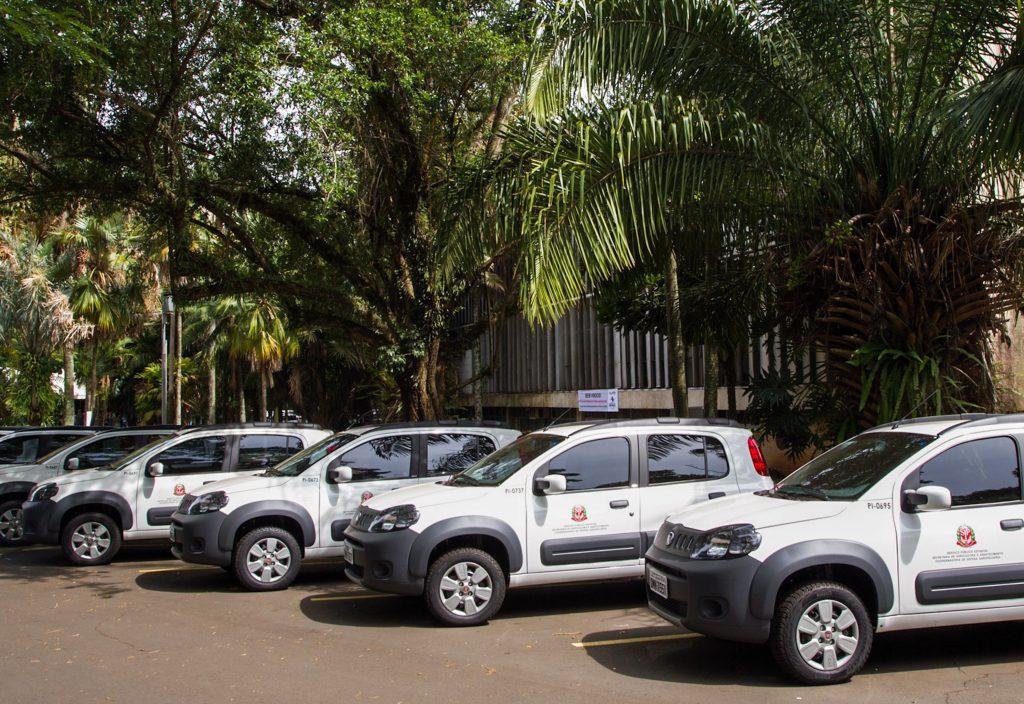 governo-sp-carros