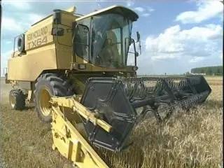 """Agricoltura: Cia lancia l'""""allarme cereali"""""""