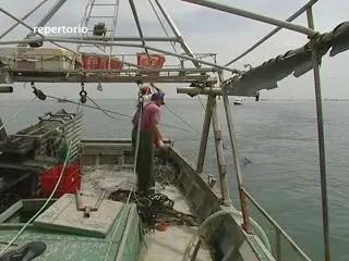 Fermo pesca fino al 10 settembre: i rischi per la Coldiretti