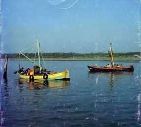 Accordo tra Regione e pescatori: misure urgenti per la sacca di Goro