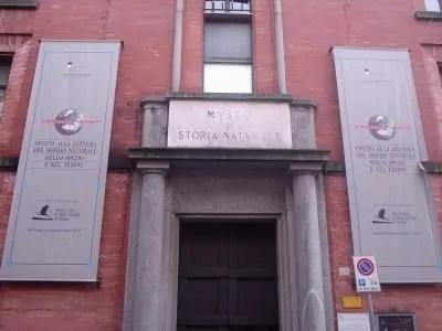 Turismo a Ferrara: i dati dei musei